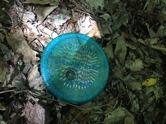 Frisbee South of Hogpen
