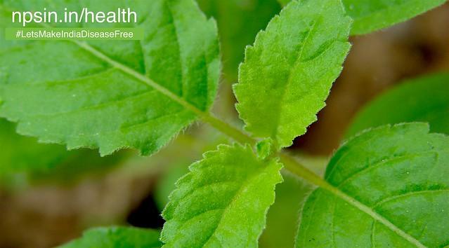 Daily Useful Health Tips using Dohawali