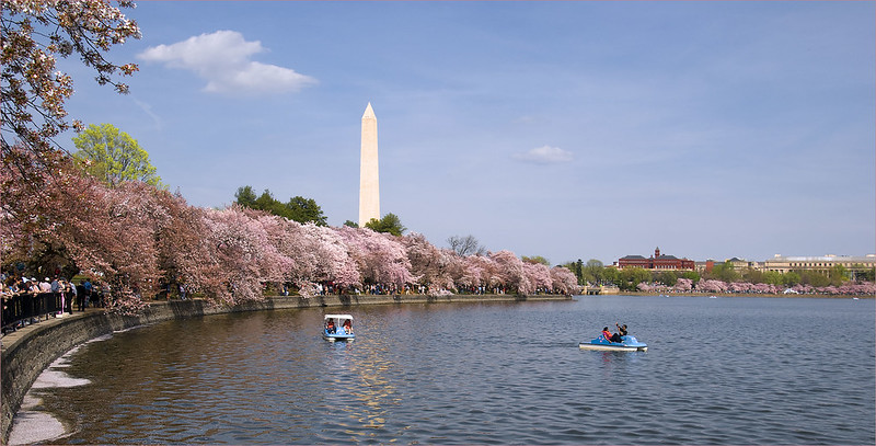 The Tidal Basin -- Washington (DC) March 2012