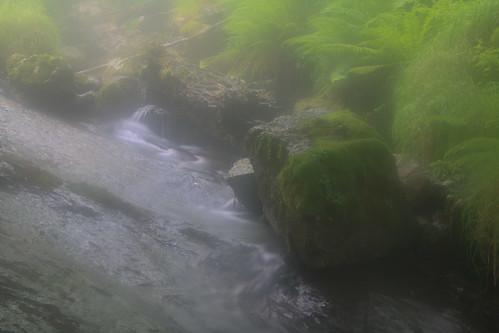 Parque Natural de #Gorbeia #Orozko #DePaseoConLarri #Flickr - -506