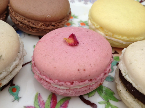 Raspberry & rose macaroon | by scrapiana