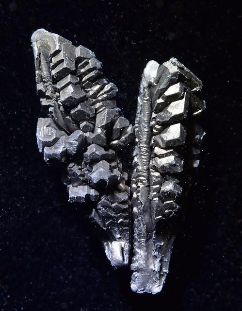 Ba (metallic barium)