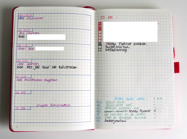 Bullet journal Conceptum weekly view