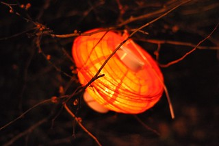 Discarded Lantern | by Chris_Samuel