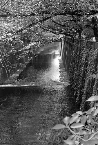 Meguro River