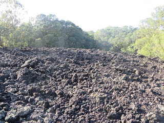Lava Field On Trail to Rangitoto Summit