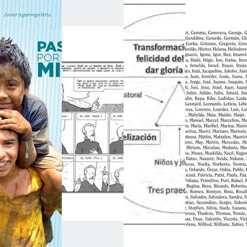 Leyendo Pasión por la Misión de Javier Aguirregabiria,