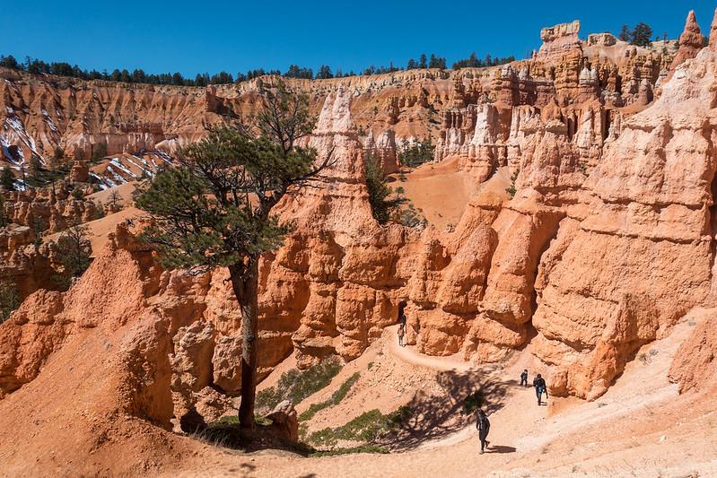 Bryce Canyon-00337 (2)