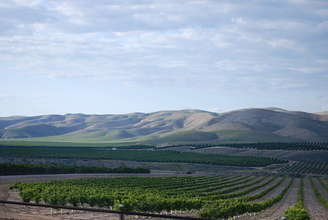 central valley landscape