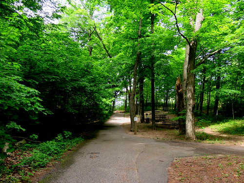 Kirk Park