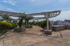 Ikegami Hall rooftop garden