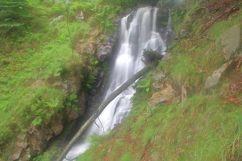Parque natural de #Gorbeia #Orozko #DePaseoConLarri #Flickr -116