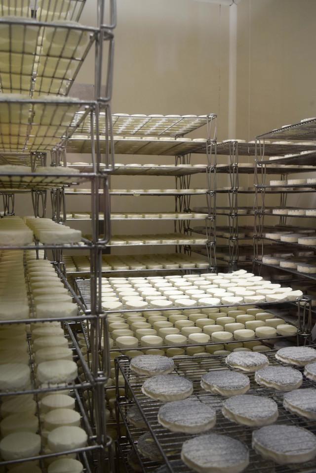 Rocomadour Goats Cheese | www.rachelphipps.com @rachelphipps