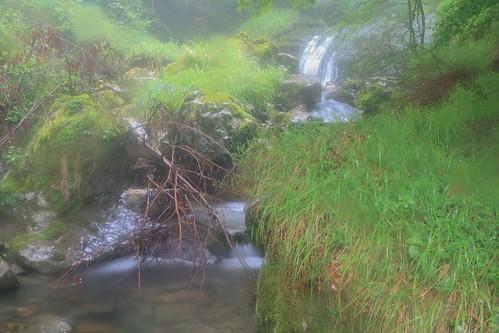 Parque Natural de #Gorbeia #Orozko #DePaseoConLarri #Flickr - -510
