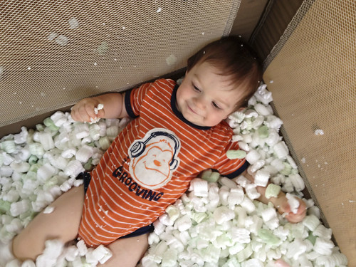 Packing peanuts, Leo | by paperseed