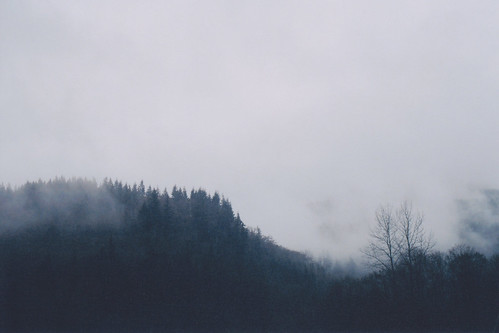 Untitled | by chooseanalog