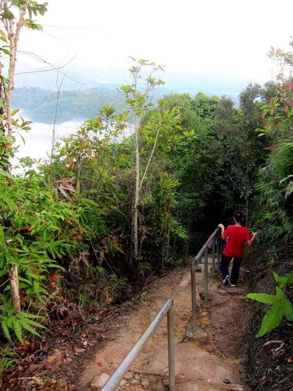 Bukit Panorama, Sungai Lembing - 09 well kept trail