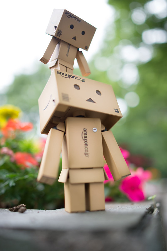 Larger Danbo has come to my home!