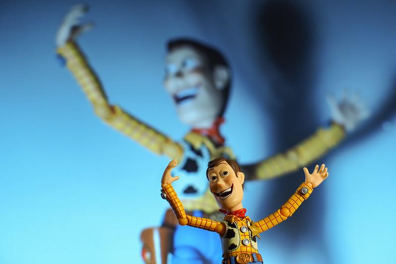 Woody|胡迪人生