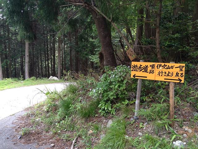 岐阜のマチュピチュ 天空の遊歩道 P782分岐