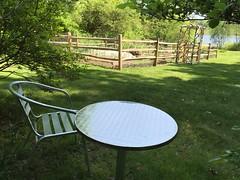 may garden IMG_6281