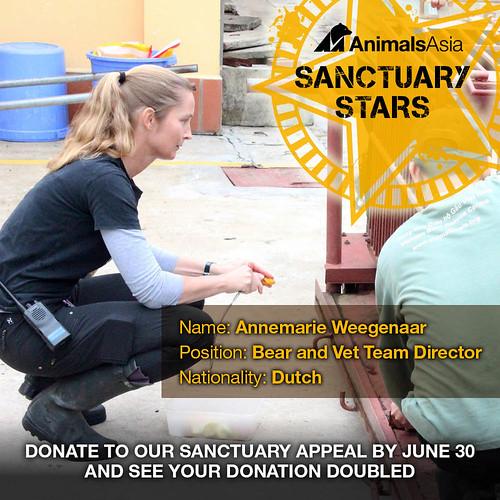 Our second Sanctuary Star – Vietnam Bear and Vet Team Director Annemarie Weegenaar