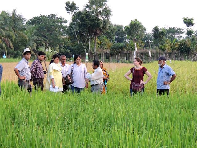 Researchers exchanging views, Bangladesh. Photo by Mahabubur Rahman, 2012.