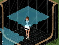 ste_Flood4