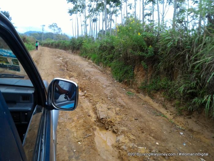 LivingMarjorney-Binahon-Agroforestry-Farm-Bukidnon (1)
