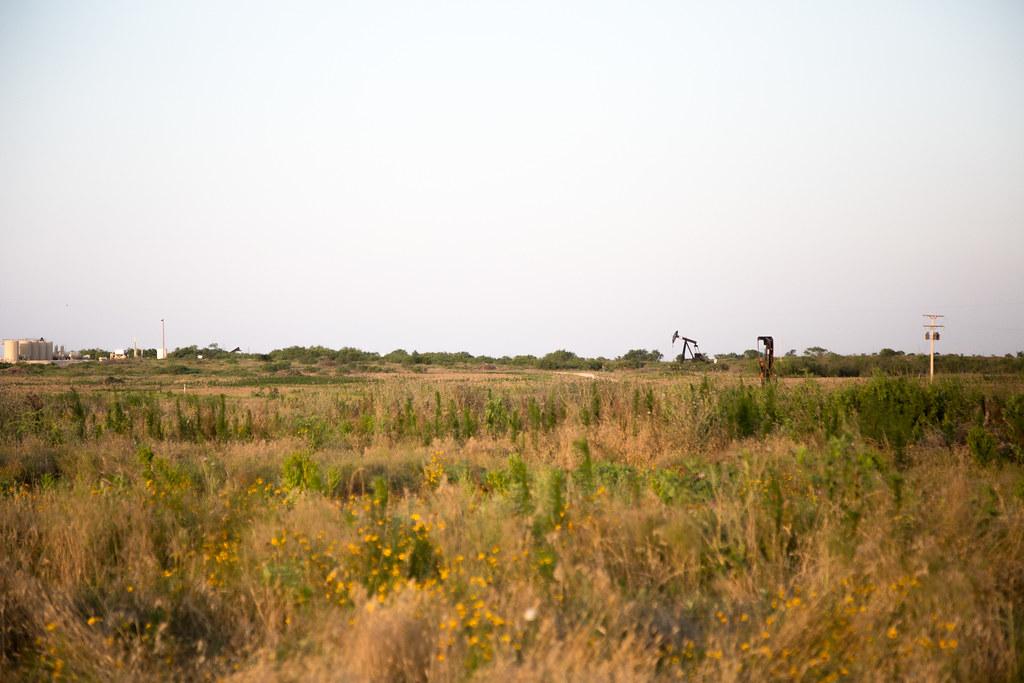6-9-16 HPH Texas Harvest Photos - Laura-2