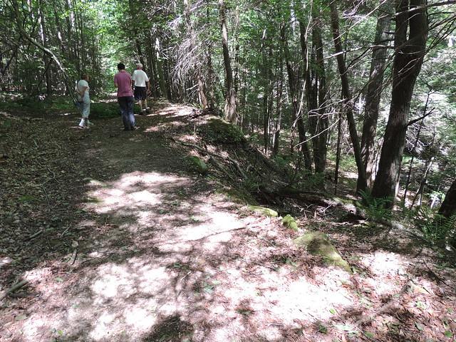 Woodbury Greenway Site Walk 6/15/2016