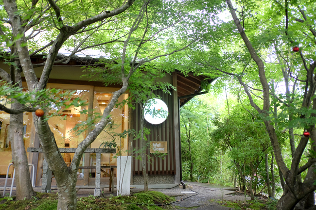 treehouse cafe arashiyama