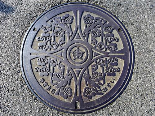 Aki Oita, manhole cover (大分県安岐町のマンホール)