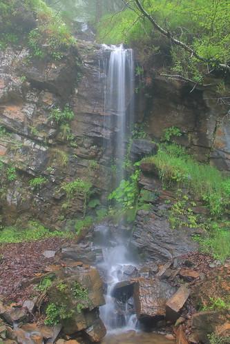 Parque Natural de #Gorbeia #Orozko #DePaseoConLarri #Flickr -181