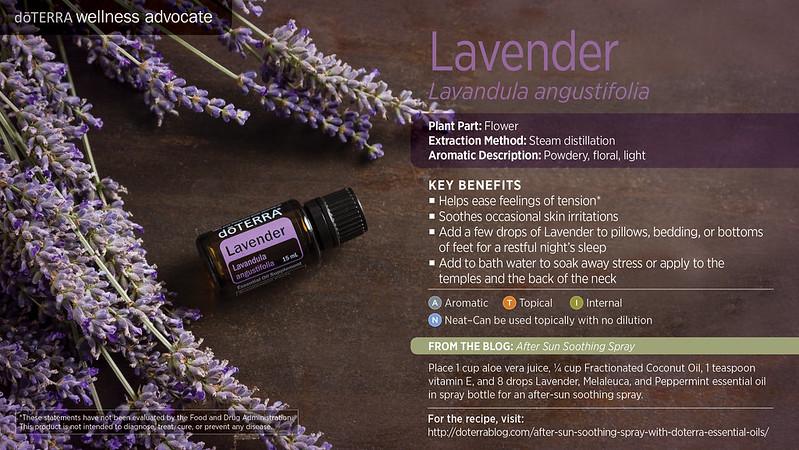 doTerra_Lavender