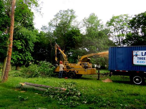 tree destroyer machine