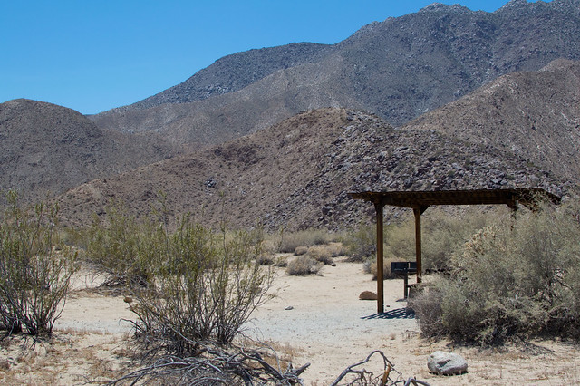 borrego palms campground, anza borrego