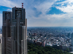 Landscape from Shinjuku Sumitomo Building Observatory in Floors 1