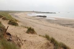Silver Bay, Ynsys Gybi