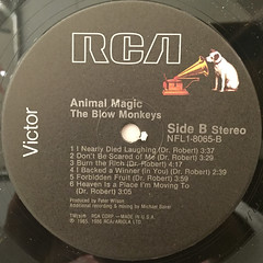 THE BLOW MONKEYS:ANIMAL MAGIC(LABEL SIDE-B)