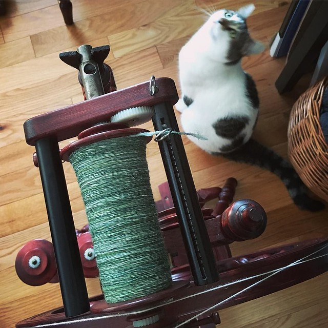 Day 5 of TdF and I finally finished a batt. Will let the singles rest and then chain-ply this weekend. #tourdefleece #teamcatitude