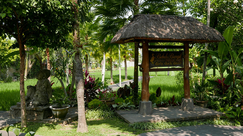 28200905266 0d949d4448 c - The definitive guide to Food, Culture and Nature in Ubud, Bali (October 2015)
