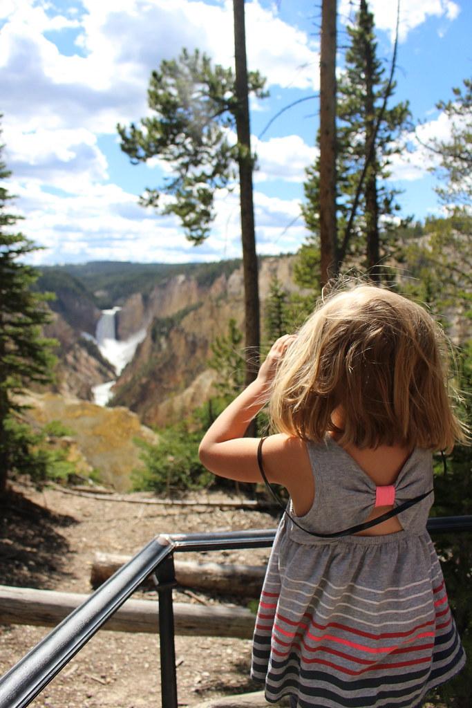 Yellowstone 2016