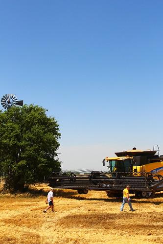 Farmer Sheldon going to take a combine ride.
