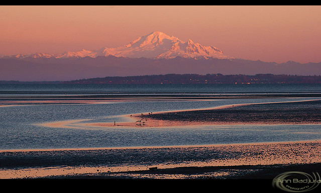 Last light at Boundary Bay, British Columbia, Canada