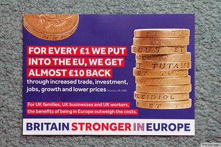 """Remain"" brochure"