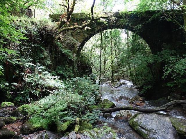 Puente de Sesín en las Fragas Do Eume