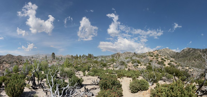 Panorama view from mile 289 on the PCT
