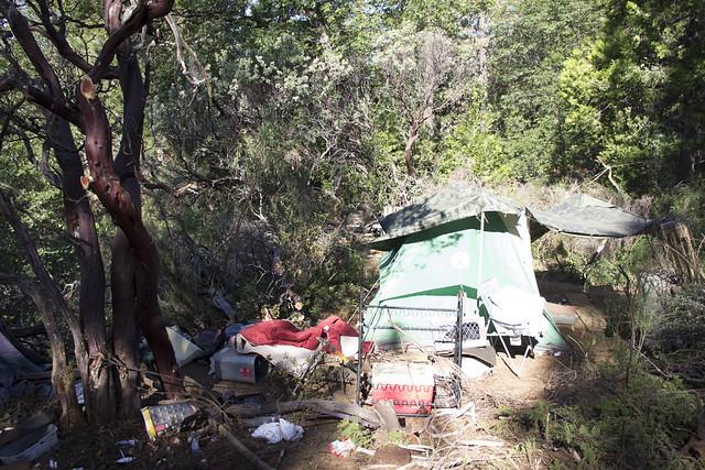 """Camp Manzanita"" Fire"