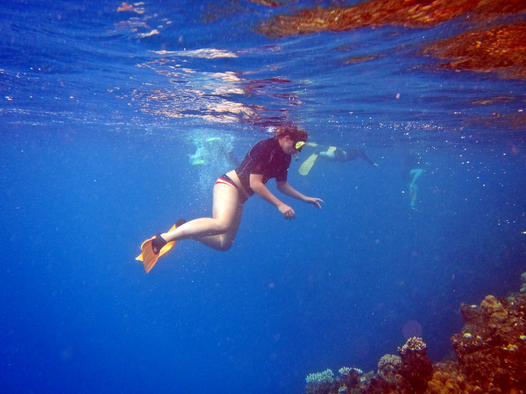 The Great Barrier Reef, Cairns
